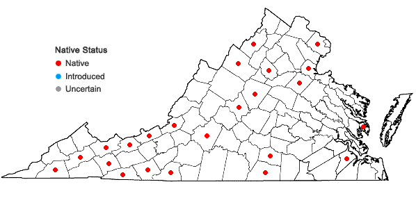 Locations ofScapania undulata (L.) Dumort. in Virginia