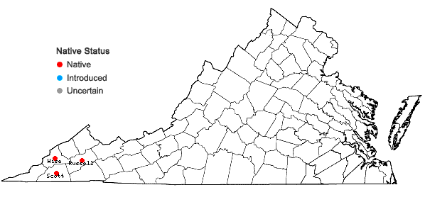 Locations ofSceptridium jenmanii (Underwood) Lyon in Virginia