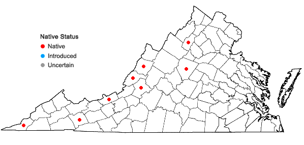 Locations ofSchistidium liliputanum (Müll. Hal.) Deguchi in Virginia