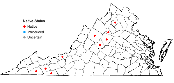 Locations ofSchistidium sp. A. in Virginia