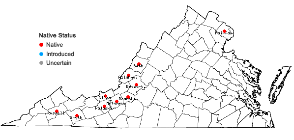 Locations ofSchistidium viride H. H. Blom & C. Darigo in Virginia