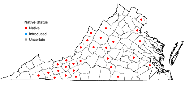 Locations ofScirpus expansus Fernald in Virginia