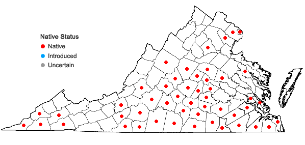 Locations ofScleria oligantha Michaux in Virginia