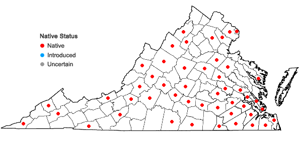 Locations ofScleria triglomerata Michaux in Virginia