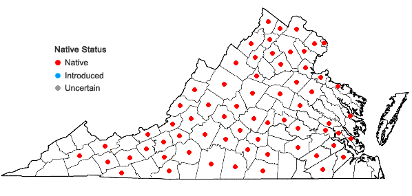 Locations ofScrophularia marilandica L. in Virginia