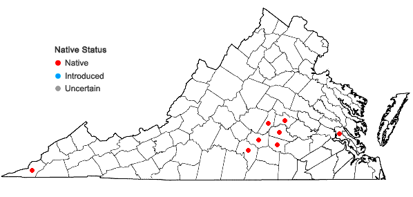 Locations ofScutellaria incana Biehler in Virginia