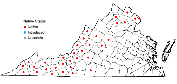 Locations ofScutellaria saxatilis Riddell in Virginia