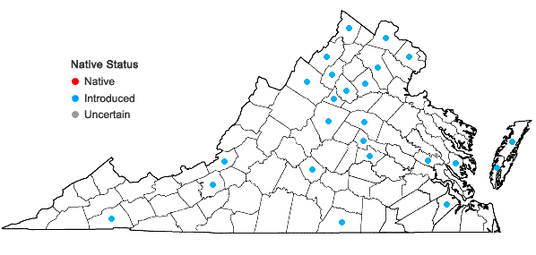 Locations ofSecale cereale L. in Virginia
