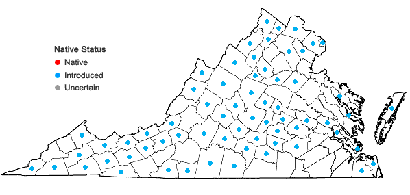 Locations ofSecurigera varia (L.) Lassen in Virginia