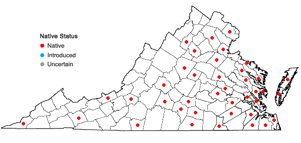 Locations ofSematophyllum adnatum (Michx.) E. Britton in Virginia