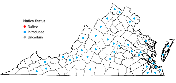 Locations ofSenecio vulgaris L. in Virginia