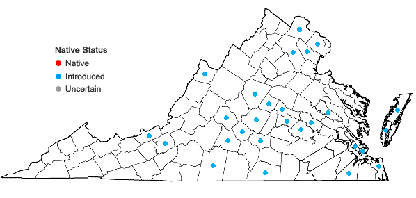 Locations ofSetaria italica (L.) Beauv. in Virginia