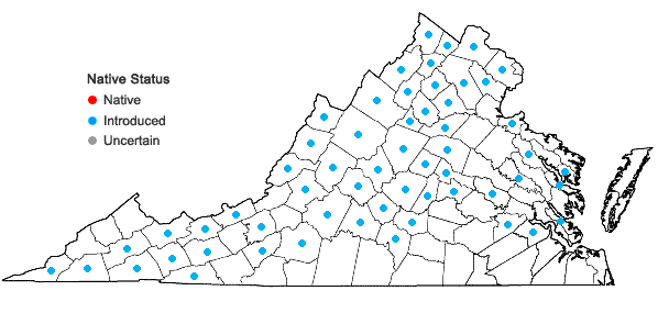 Locations ofSilene vulgaris (Moench) Garcke in Virginia