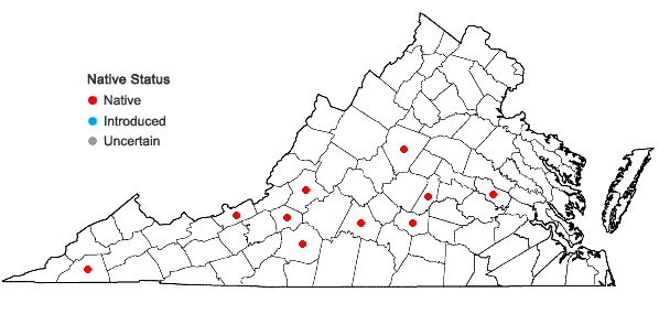 Locations ofSolenostoma crenuliforme (Aust.) Steph. in Virginia