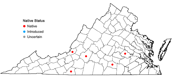 Locations ofSolenostoma fossombronoides (Aust.) Schust. in Virginia