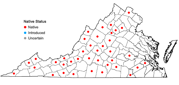 Locations ofSolidago arguta Ait. var. arguta in Virginia