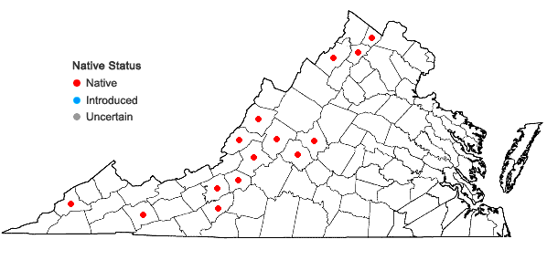 Locations ofSolidago canadensis L. var. hargeri Fern. in Virginia