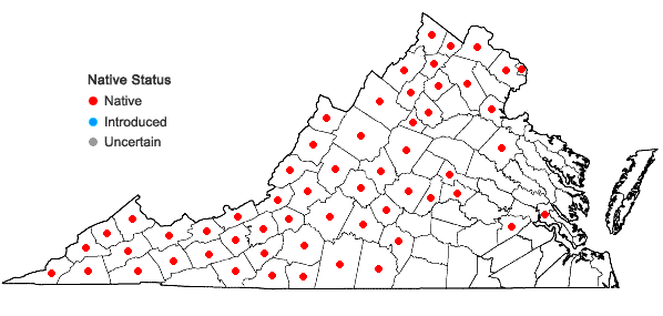 Locations ofSolidago flexicaulis L. in Virginia