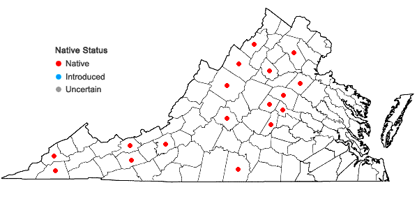 Locations ofSolidago puberula Nutt. var. puberula in Virginia
