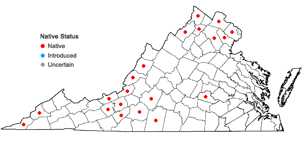 Locations ofSolidago rigida L. var. rigida in Virginia