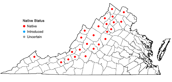 Locations ofSolidago squarrosa Nutt. in Virginia