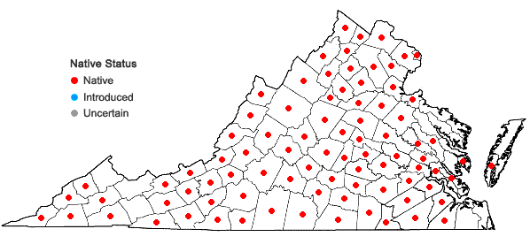 Locations ofSorghastrum nutans (L.) Nash in Virginia