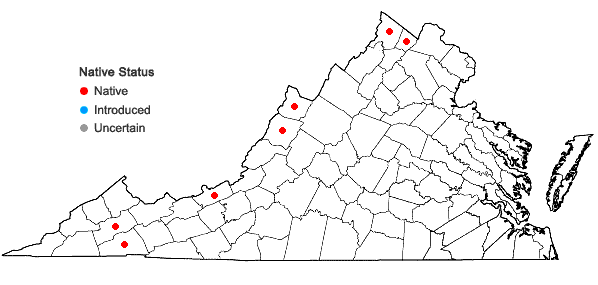 Locations ofSparganium emersum Rehmann in Virginia
