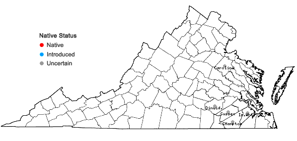 Locations ofSpermolepis divaricata (Walt.) Raf. in Virginia