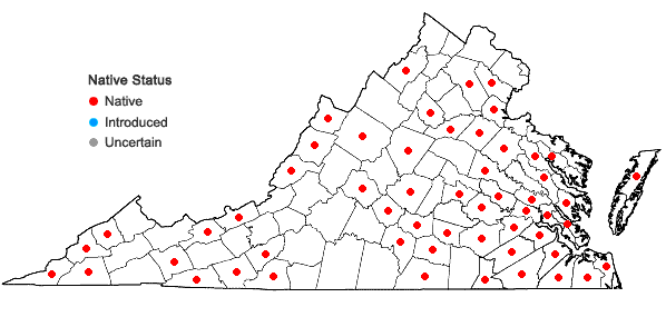 Locations ofSphagnum affine Renauld & Cardot in Virginia