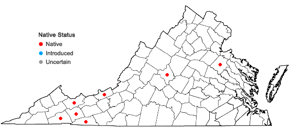 Locations ofSphagnum capillifolium (Ehrh.) Hedw. in Virginia