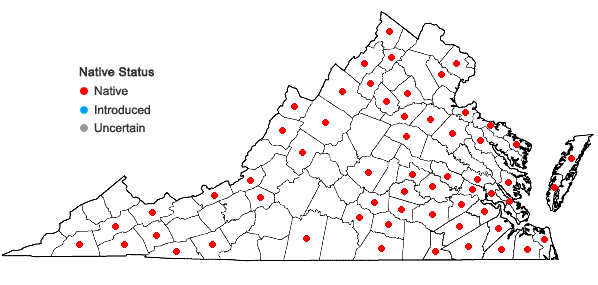 Locations ofSphagnum lescurii Sullivant in Virginia