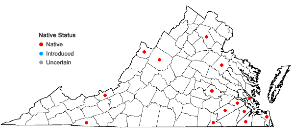 Locations ofSphagnum magellanicum Bridel in Virginia