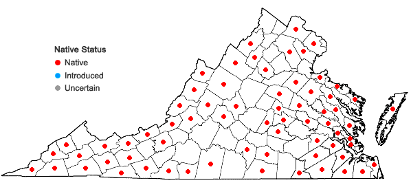 Locations ofSphagnum palustre Linnaeus in Virginia