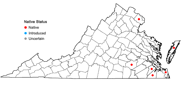 Locations ofSphagnum perichaetiale Hampe in Virginia