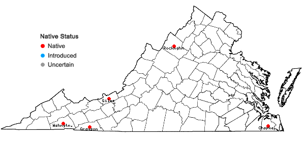 Locations ofSphagnum russowii Warnst. in Virginia