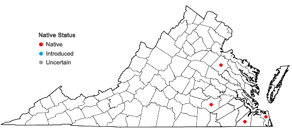 Locations ofSphagnum strictum Sullivant in Virginia