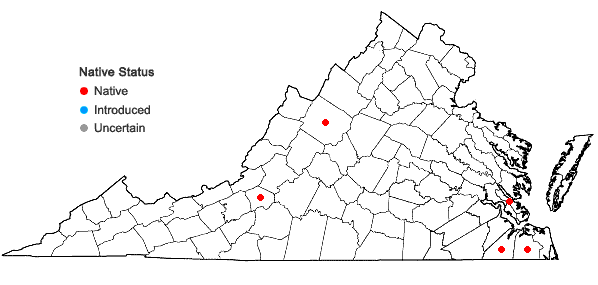 Locations ofSphagnum trinitense Müll. Hal. in Virginia