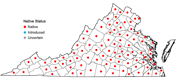 Locations ofSphenopholis nitida (Biehler) Scribn. in Virginia
