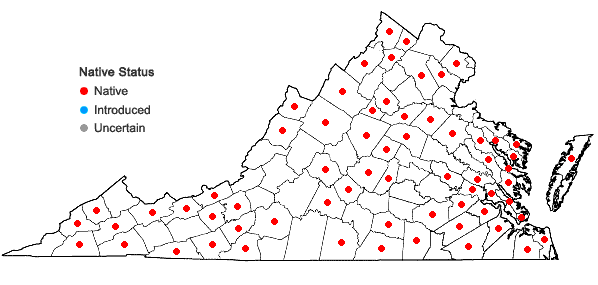 Locations ofSphenopholis pensylvanica (L.) A.S. Hitchc. in Virginia