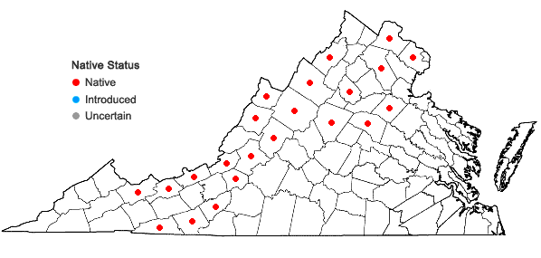 Locations ofSpiraea alba Du Roi var. alba in Virginia