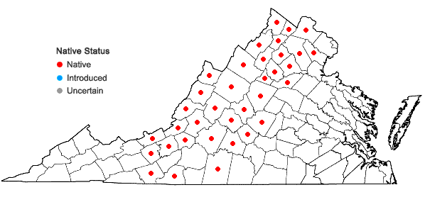 Locations ofSpiraea corymbosa Raf. in Virginia