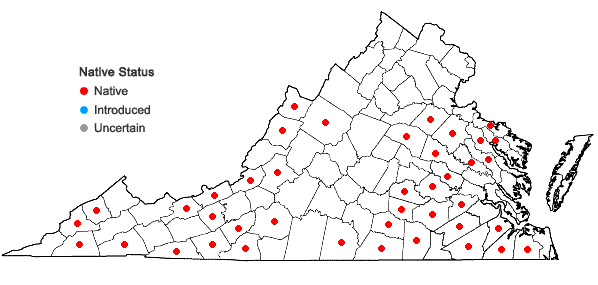 Locations ofSpiraea tomentosa L. in Virginia