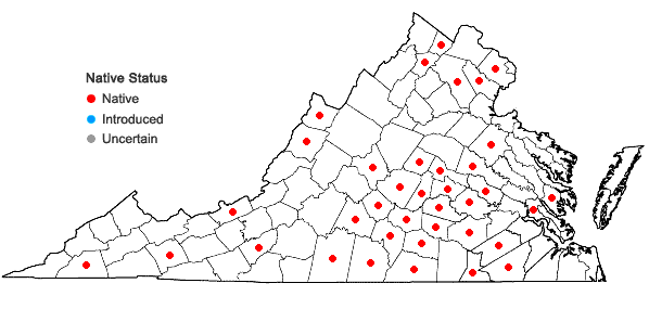 Locations ofSpiranthes ovalis Lindl. var. erostellata Catling in Virginia