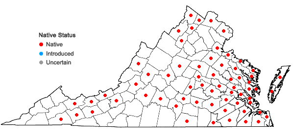 Locations ofSpirodela polyrrhiza (L.) Schleid. in Virginia