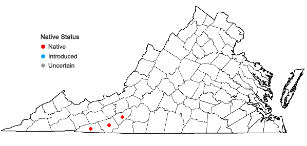 Locations ofStachys appalachiana D.B. Poindexter & J.B. Nelson in Virginia