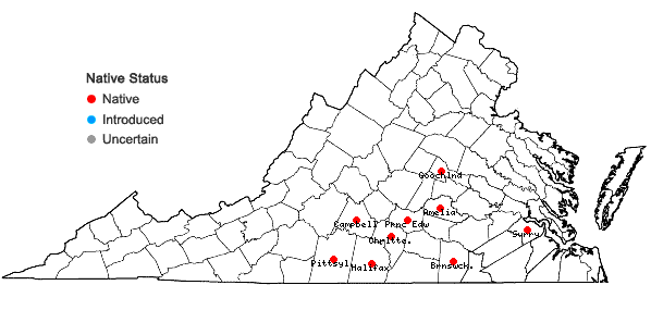 Locations ofStachys matthewsii G.P. Fleming, J.B. Nelson, & J.F. Townsend in Virginia