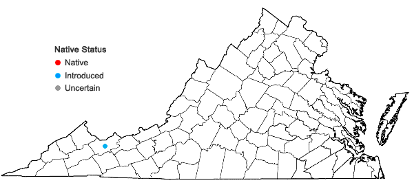 Locations ofStachys palustris L. in Virginia