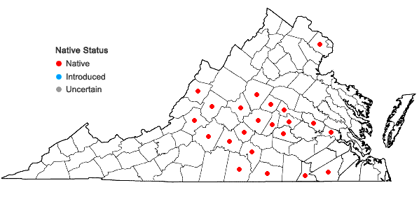 Locations ofStachys tenuifolia Willd. in Virginia