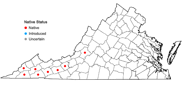 Locations ofStellaria corei Shinners in Virginia