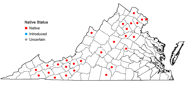 Locations ofStellaria longifolia Muhl. in Virginia